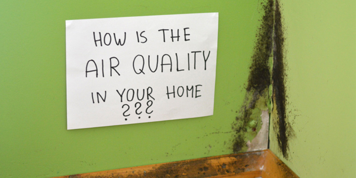 bad Indoor Air Quality culprits