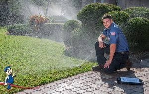 lawn sprinkler and irrigation systems