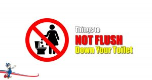 Flush Down Your Toilet